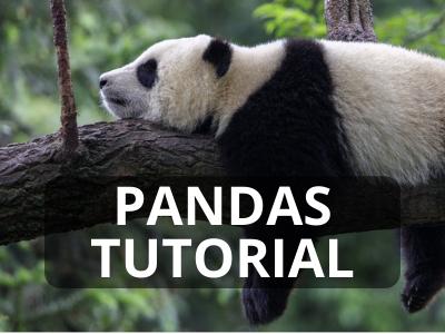 Python Pandas Tutorial Kurs